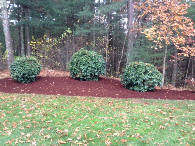Stand Out Landscaping Amp Lawn Care Carlisle Ma